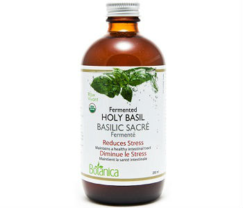 Botanica Fermented Holy Basil Review - For Improved Overall Health