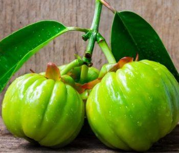 5 Incredible Health Benefits Of Garcinia Cambogia